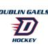 Dublin high school hockey book crop icon